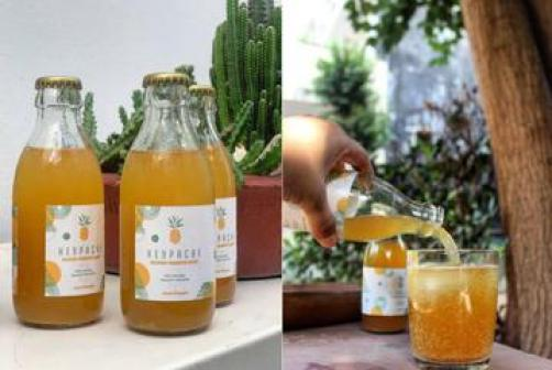 Heypache: India's First Homegrown Fermented Pineapple Drink Is Now In Delhi  - Homegrown