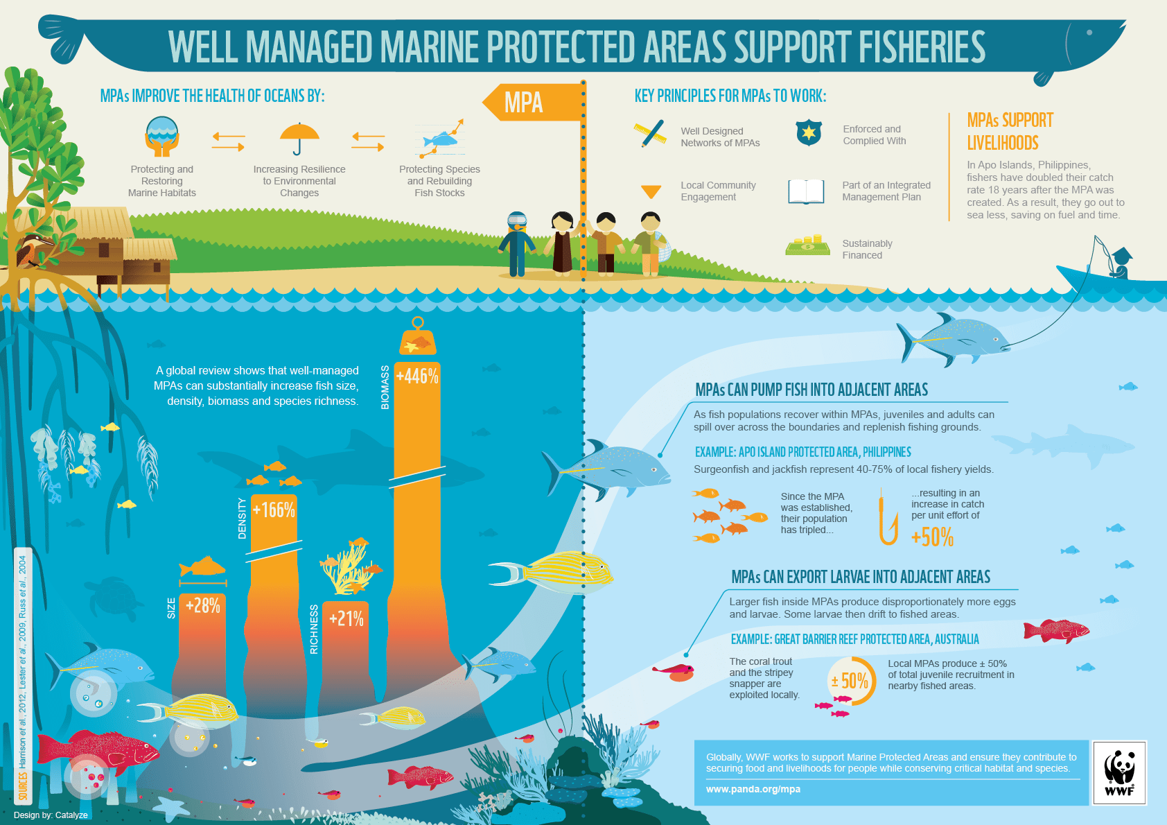 Infographic How Well Managed Marine Protected Areas