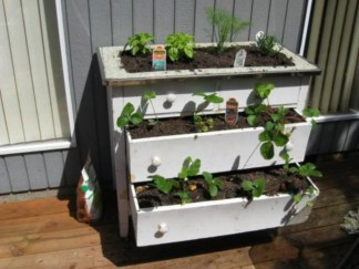 Creative ways to grow strawberry at your garden 26
