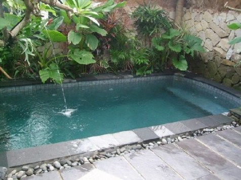 Refreshing plunge pool design ideas fo you to consider 36