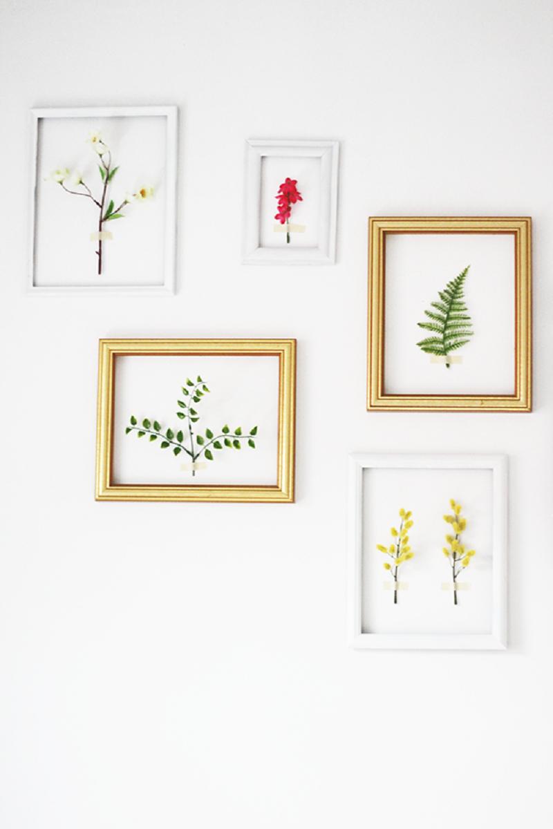 3d framed botanicals galery