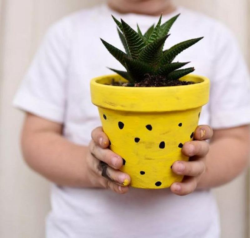 Pineapple inspired pot