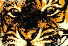 I Wanna Go Back: Survivor – Eye of the Tiger [1982]