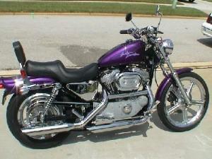 2000 HarleyDavidson® XL883C Sportster® 883 Custom (concord purple), Jacksonville, Florida (4504