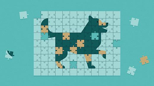 I lettori hanno simulato la genetica dell'allevamento dei cani per risolvere un enigma sulle percentuali di razza mista e sulla riproduzione sessuale.