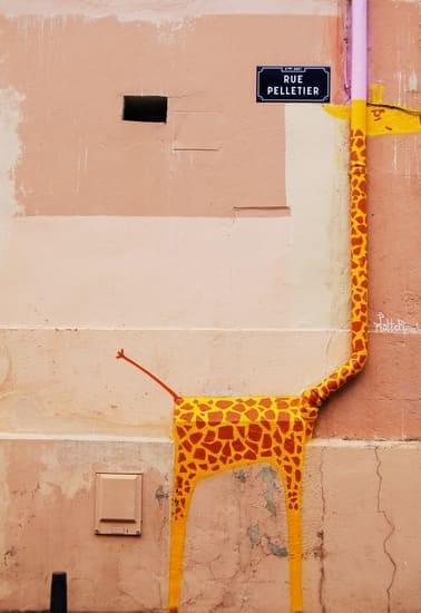 Giraffe for laughs