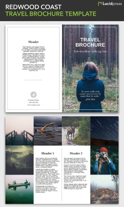21 Creative Brochure Cover Design Ideas for Your Inspiration brochure design