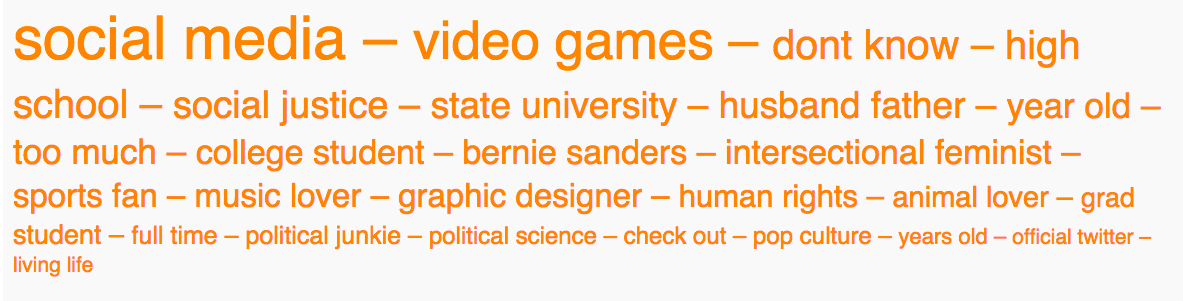 04 - sanders two word cloud.png