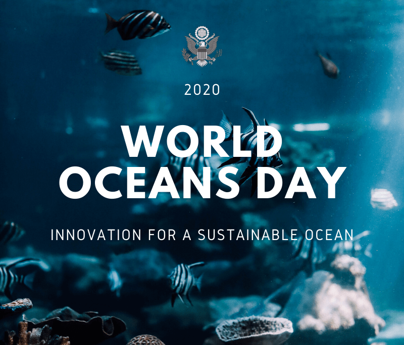 After 4 pm, age 3+. World Oceans Day 2020 U S Embassy Consulates In The United Kingdom