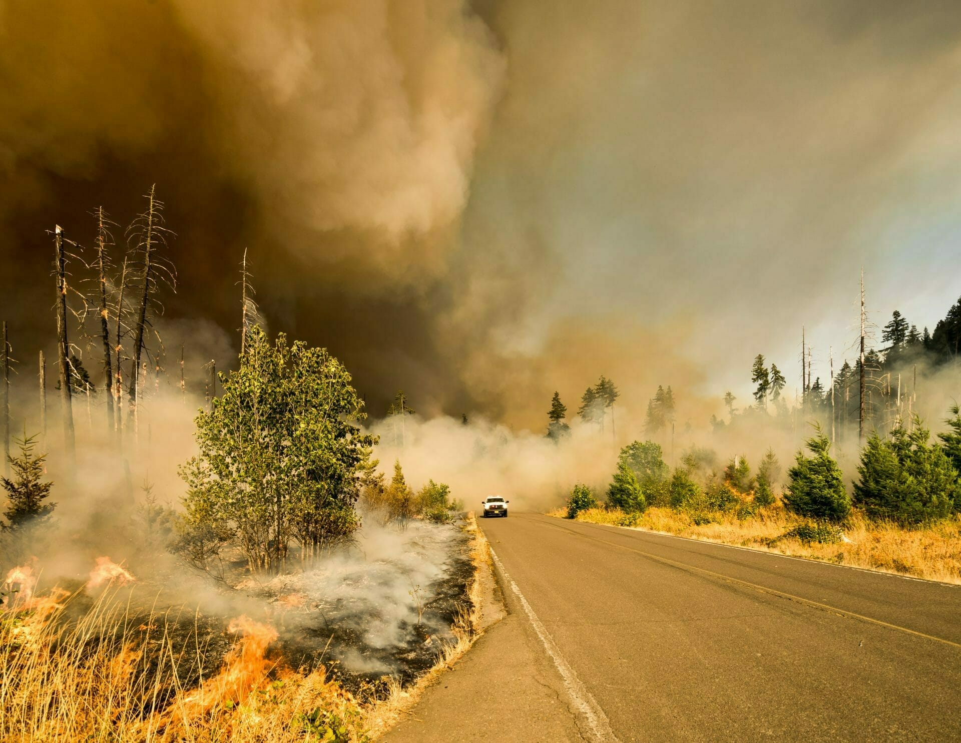 Picture of Forrest Fire and Road for Real Wealth Show Podcast Episode #662