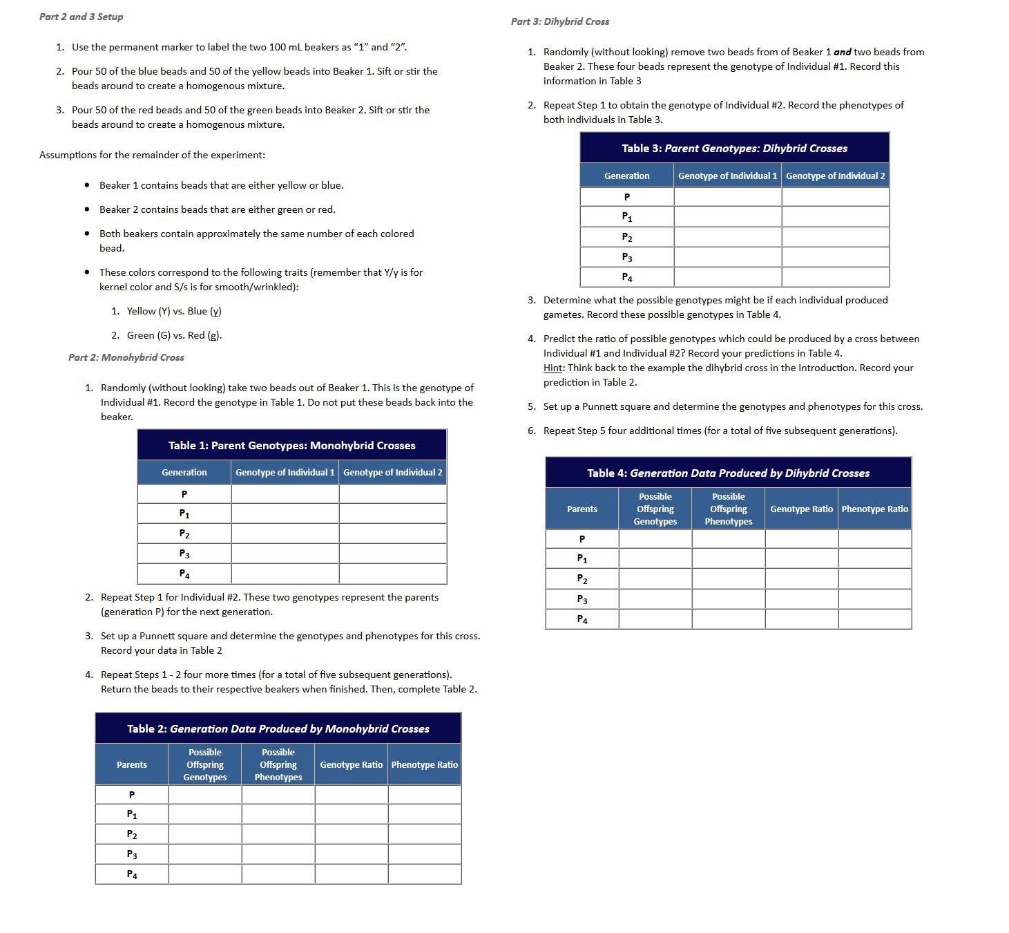 Homework Help With Punnett Squares Offspring