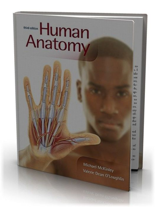 Human Anatomy 3rd Edition Mckinley Periodic Diagrams Science