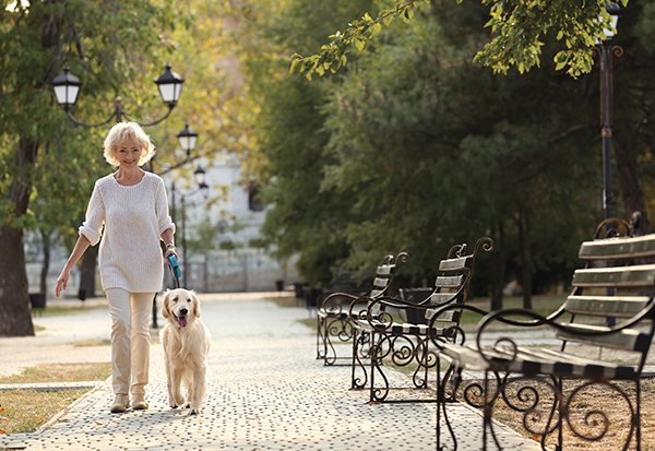 5 Ways Dogs Can Improve Lives