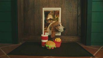 DashPass Pup
