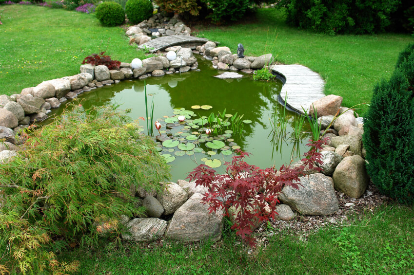 37 Backyard Pond Ideas & Designs (Pictures) on Front Yard Pond  id=42173