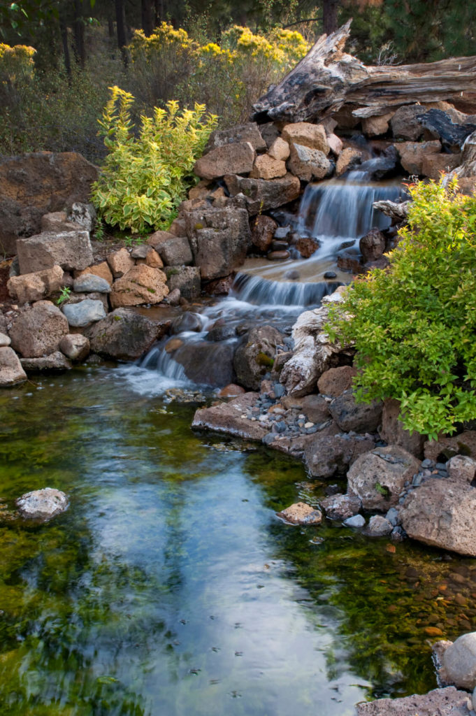 50 Pictures of Backyard Garden Waterfalls (Ideas & Designs) on Small Backyard Pond With Waterfall  id=69107