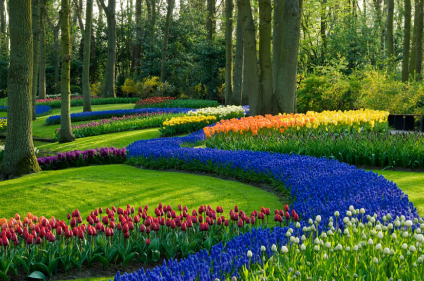 41 Stunning Backyard Landscaping Ideas (PICTURES) on Beautiful Backyard Landscaping  id=92622