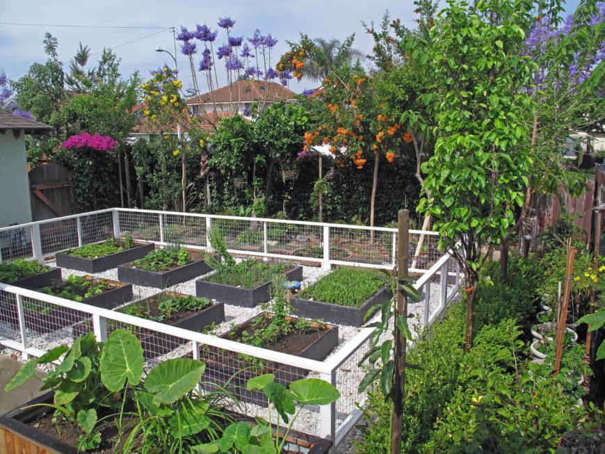 41 Backyard Raised Bed Garden Ideas on Backyard Raised Garden Bed Ideas id=64825
