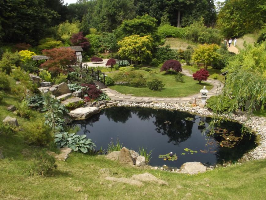 Home Fish Pond Design