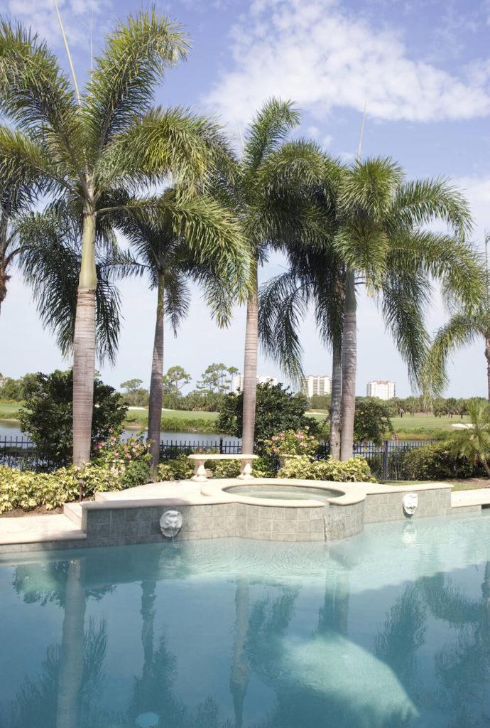 30 Spectacular Backyard Palm Tree Ideas on Palm Tree Backyard Ideas id=51339