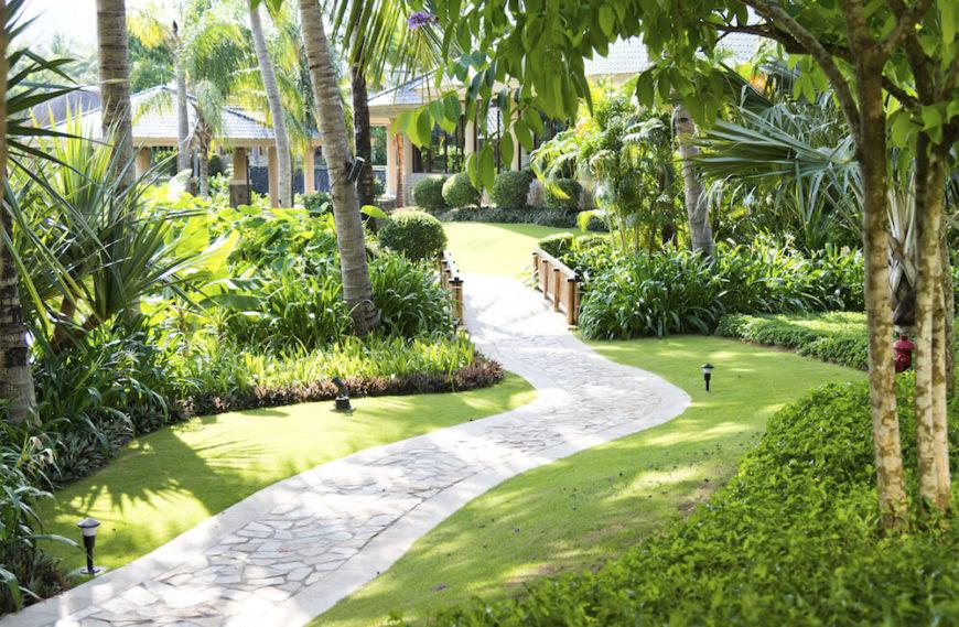 30 Spectacular Backyard Palm Tree Ideas on Palm Tree Backyard Ideas id=17366