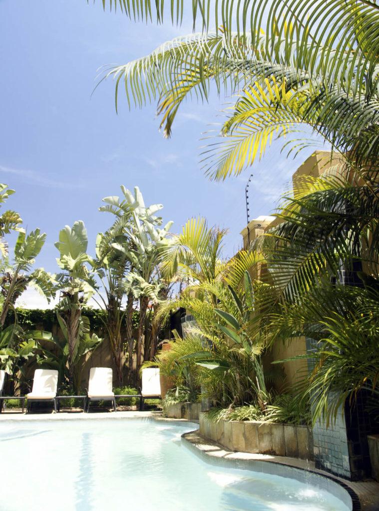 30 Spectacular Backyard Palm Tree Ideas on Palm Tree Backyard Ideas id=13491