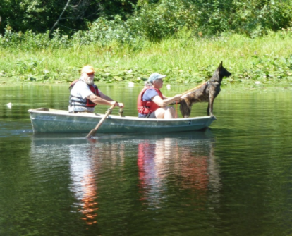 Dog in rowboat
