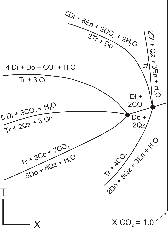 Metamorphic T X Diagrams