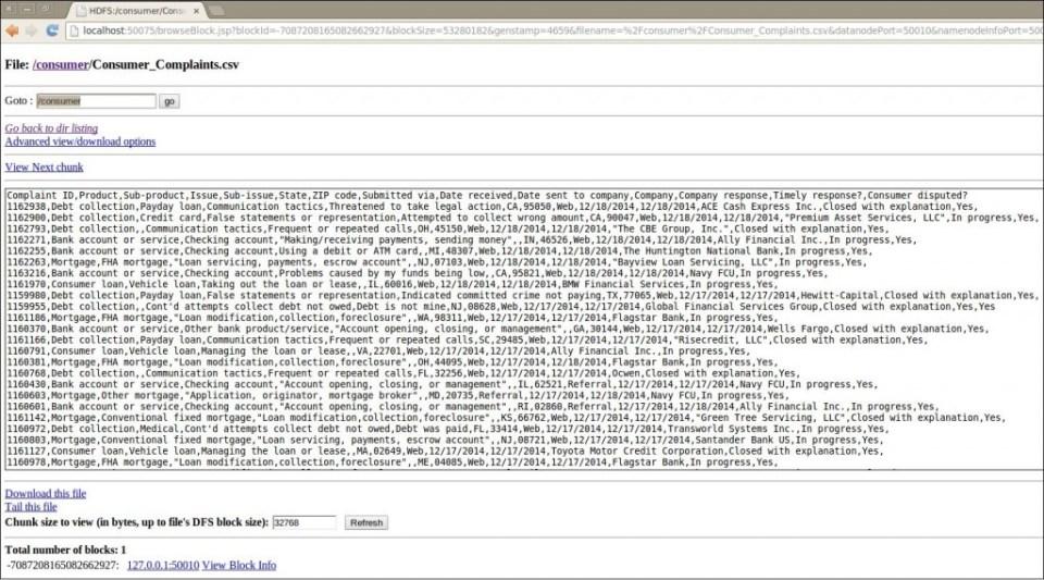 Data Set Details Screen