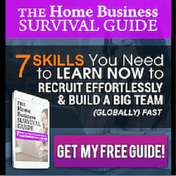 http://www.homebusinesssurvival.com