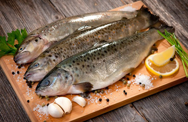 How To Lose Belly Fat Fast- Fish