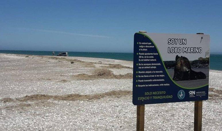 Resultado de imagen para playa villarino rio negro