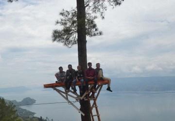 berpose di atas pohon memandang danau toba