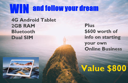 Win and Follow Your Dream With $600 Worth of Online Business Information