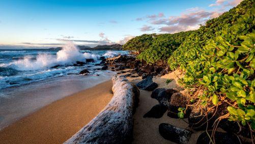 Image result for Kauai, Hawaii