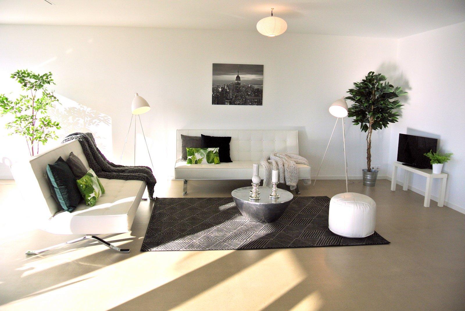switzerland iahsp europe. Black Bedroom Furniture Sets. Home Design Ideas