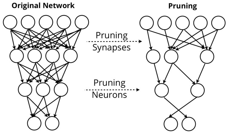 compression schemes on neural network sizes