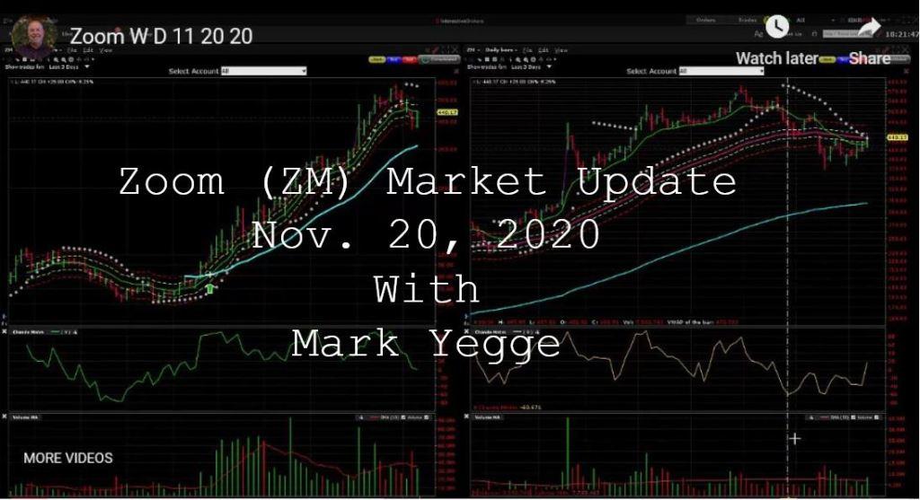 Zoom 11-20-2020