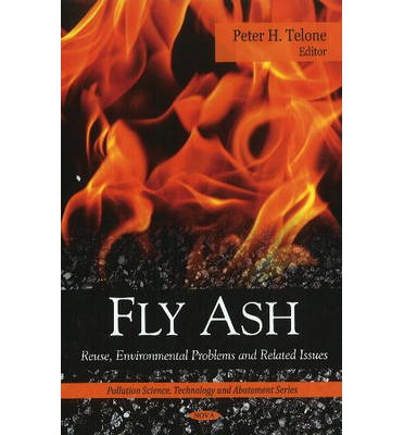Fly Ash: Reuse, Environmental Problems and Related Issues ...