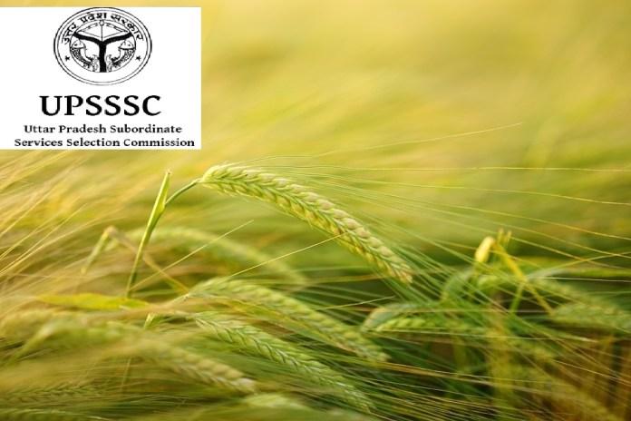 UPSSSC subordinate agriculture technical class III Recruitment 2018