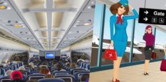 Career as Flight Steward