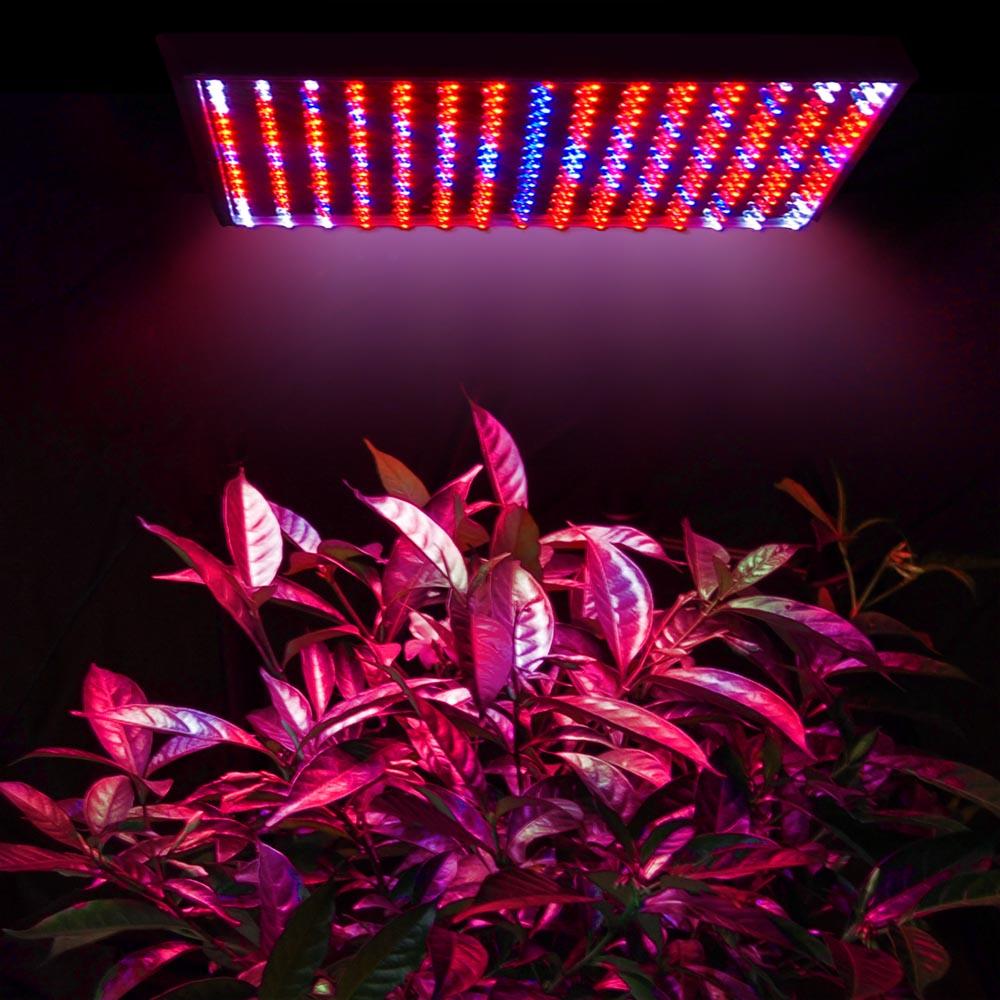 Red Led Grow Lights