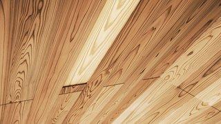 La complexité des panneaux de toit peut être vue dans ce détail rapproché du plafond.