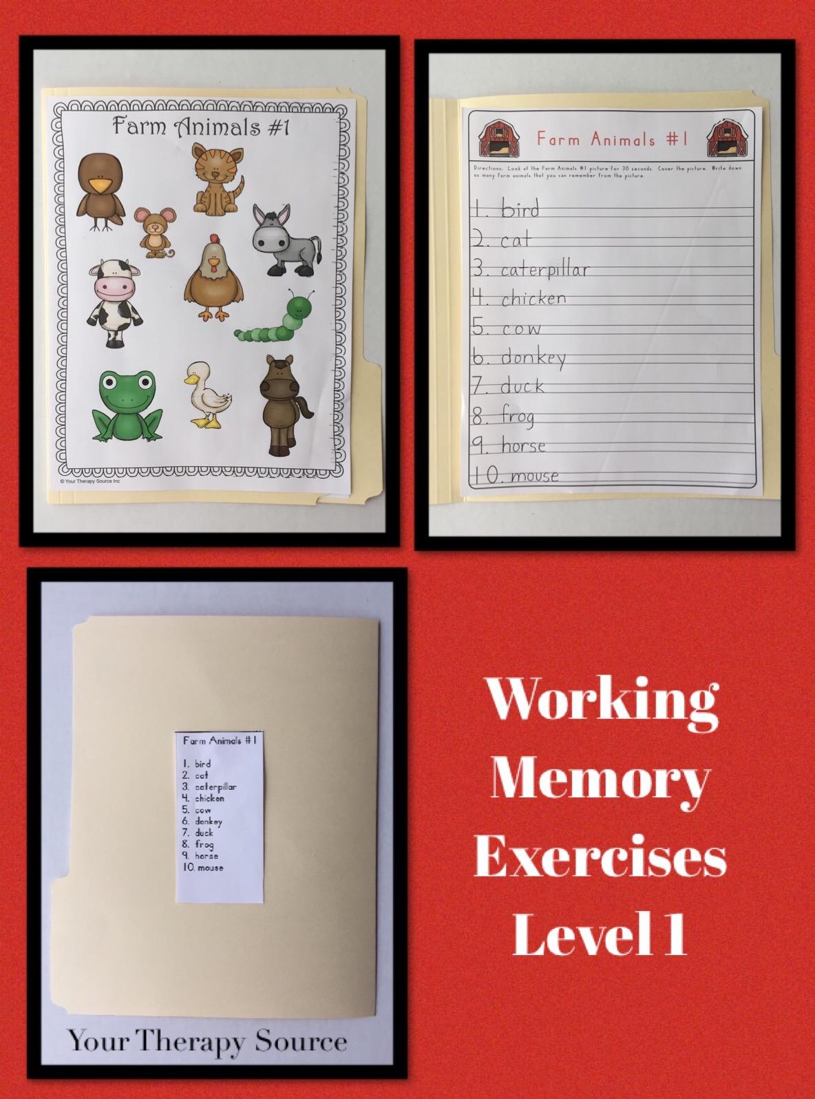 Working Memory Exercises