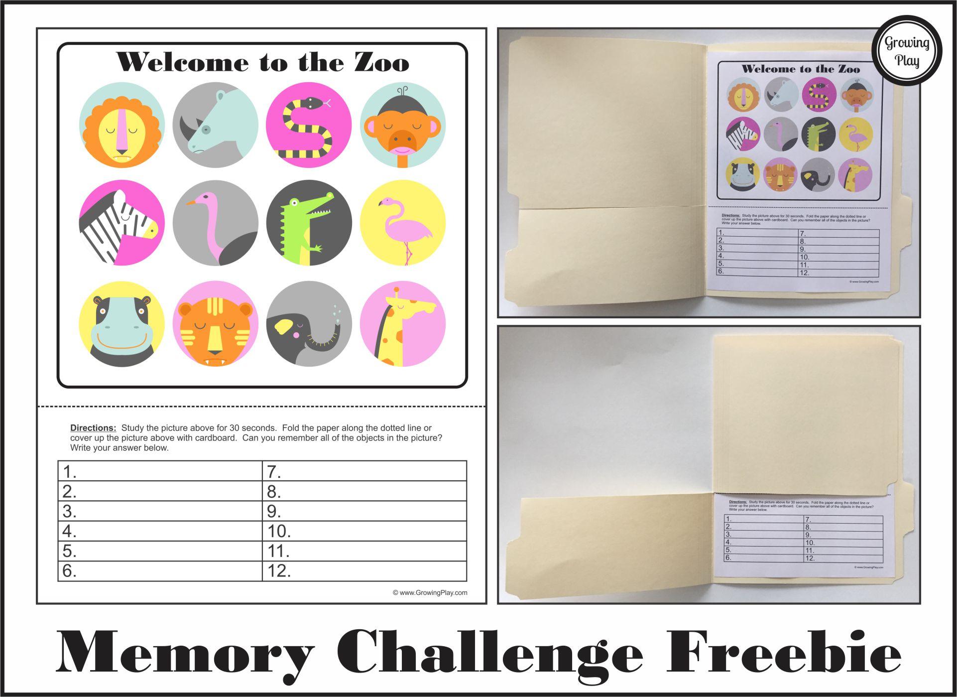 Visual Memory Challenge