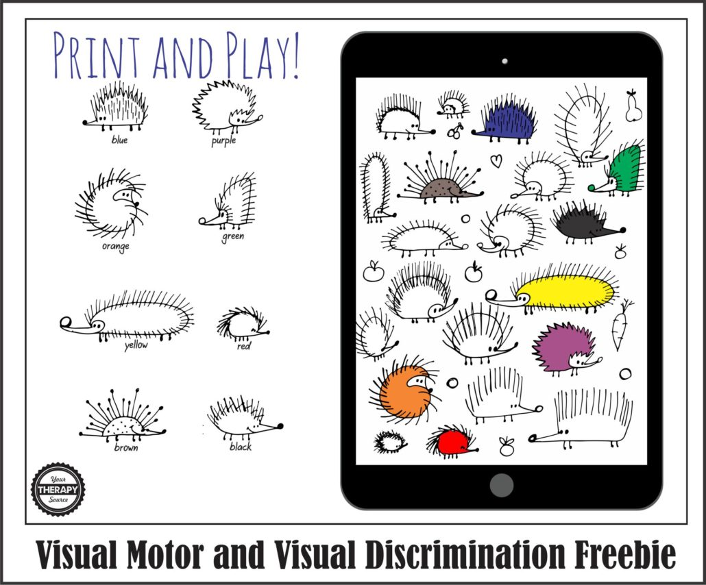 Visual Motor And Discrimination Activity