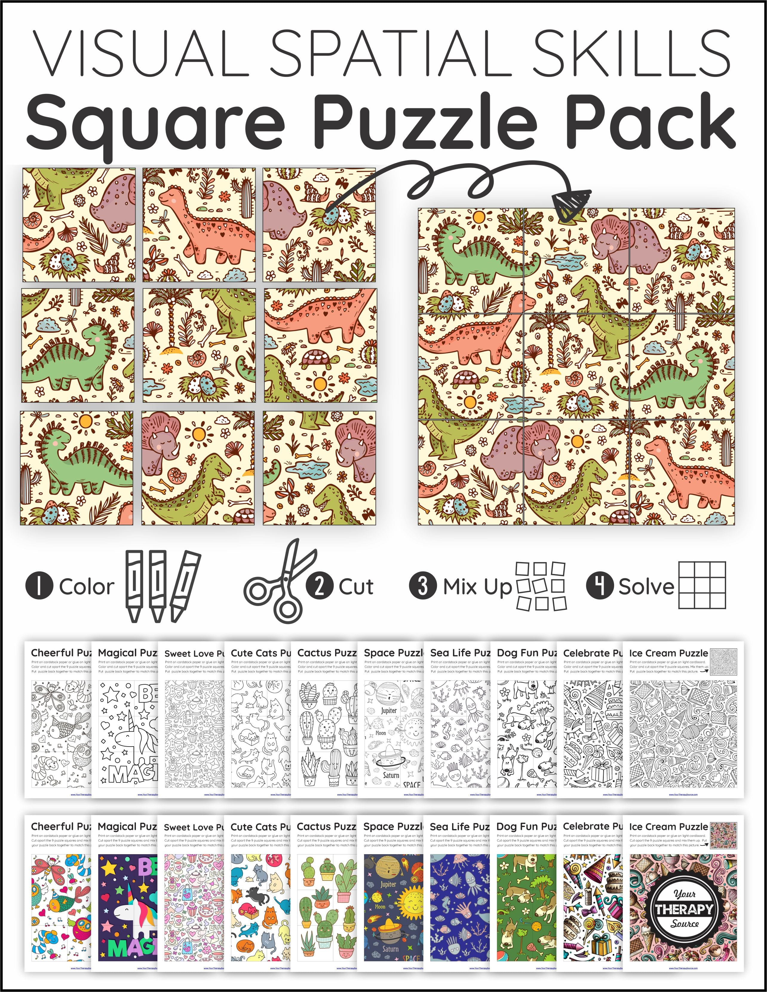 Visual Spatial Puzzles