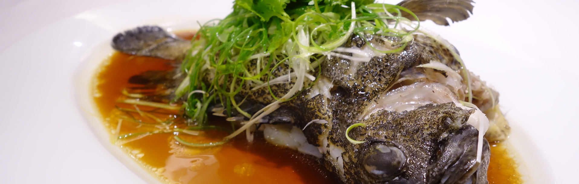Best Seafood San Francisco