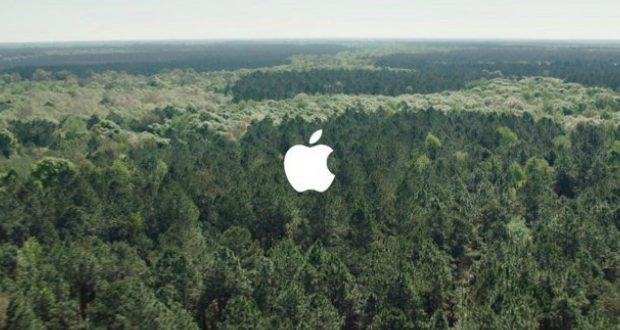 Within these forests, protected areas are the principle defense against forest loss and species extinctions. Apple Protected Forestland To Cover Its Paper Packaging