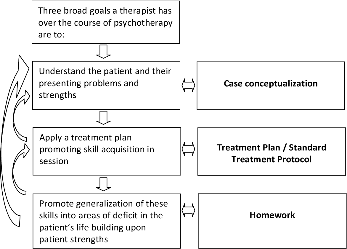 The Relationship Between Case Conceptualization And